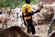 Photo of Fulani association, Miyetti Allah to drag Taraba Government into International criminal court (ICC) Hague