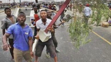 Photo of Irate Youths Burn down Trailerload of Cows for Knocking down Eight Children in Anambra
